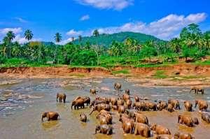 srilanka groepsvakantie korting